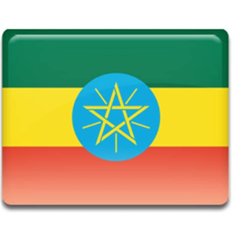 Research on inventory management in Ethiopian