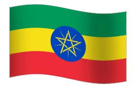 Health Management Information System in Ethiopia: Who Owns